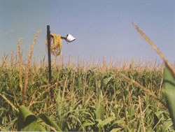 Smart Farming Study: use of clever infrared sensors